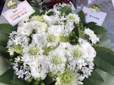 t-flower_20170221_1539_01.jpg