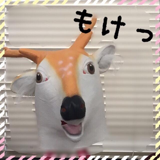 S__10870810.jpg