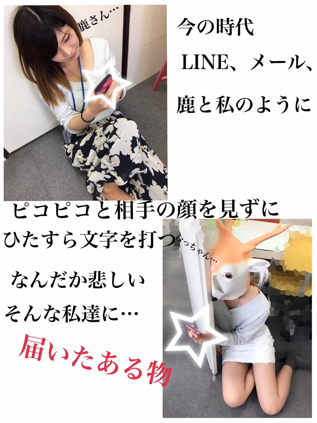 S__3989533.jpg