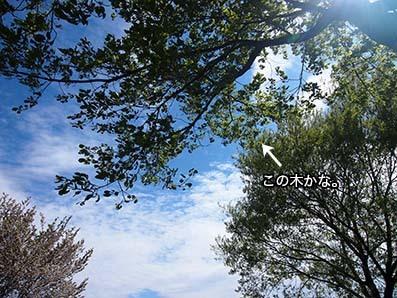 170508_3.jpg