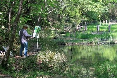 IMG_6179湿地A