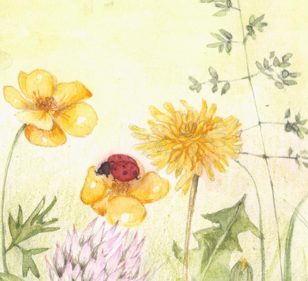 flower126虫2