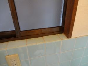 窓 プロのお掃除