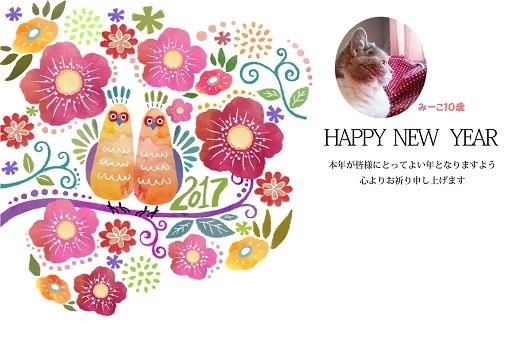 2017年賀状みーこ