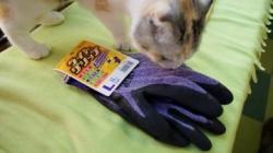 クッションに付いた毛玉を作業用手袋で取ってみた! 1
