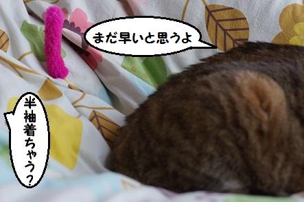 イイニュースの爽快感はサイコー!