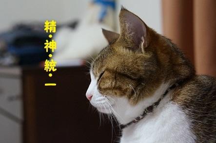精神鍛錬のたまもの  (´ー`)フッ