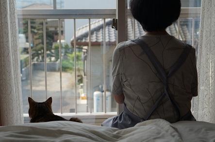 そこのお二人、朝は忙しいのだぞ。