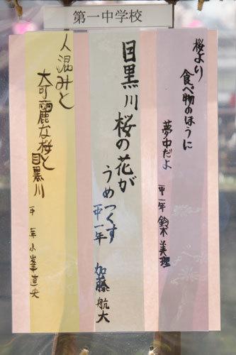 20170402目黒川川柳
