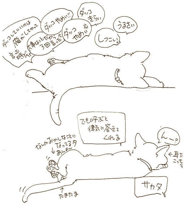 20170507_001.jpg