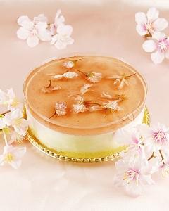 桜咲く レアチーズケーキ