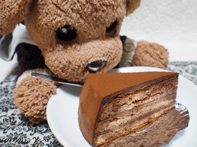 フジイ チョコケーキ