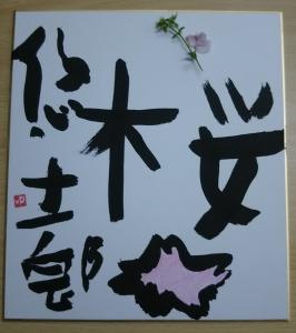 桜の作品-1704
