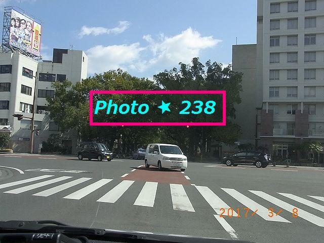 県庁通りが見える。
