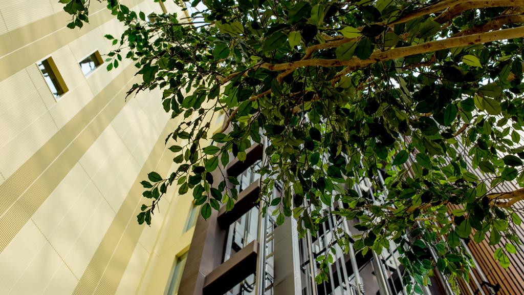東京ベイ舞浜ホテル ロビーにて(東京ディズニーリゾート・オフィシャルホテル)(その他)(TDR)