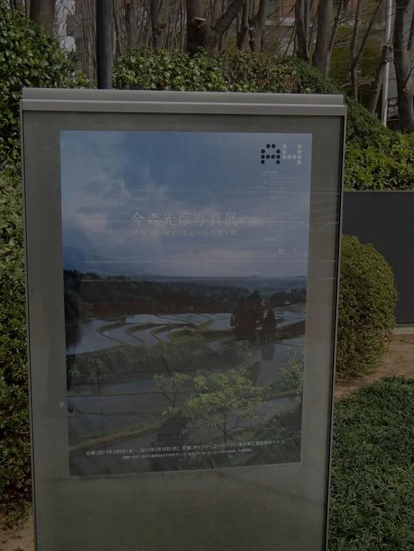 2017 2 23 今森展覧会の看板 ブログ用.jpg