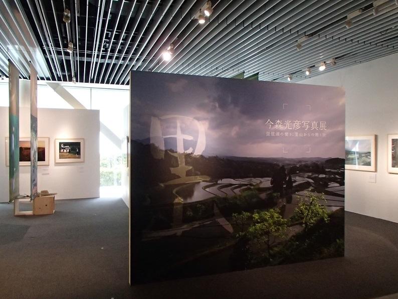 2017 3 23 今森さんの展覧会の前景 ブログ用.jpg