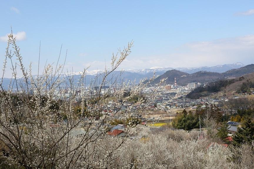 2017 4 2 花見山からの遠景 ブログ用.jpg