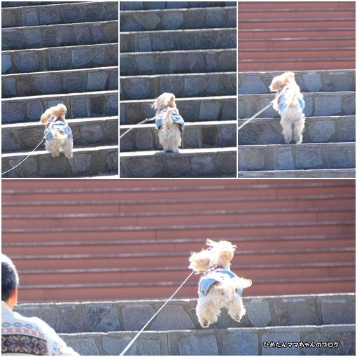 階段のぼり2月24日