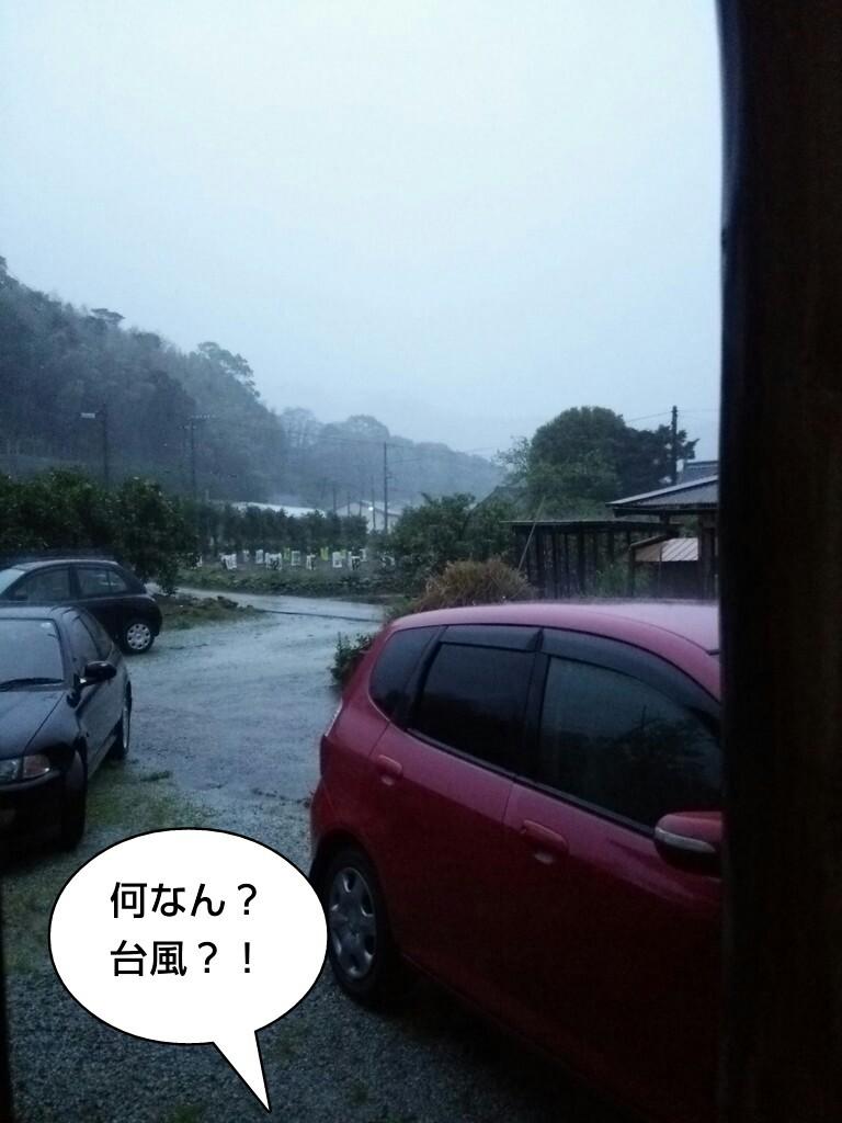 何なん?台風?