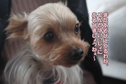 IMG_02350307.jpg