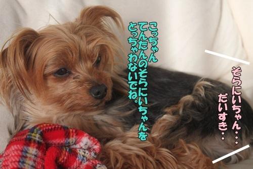 IMG_05830328.jpg