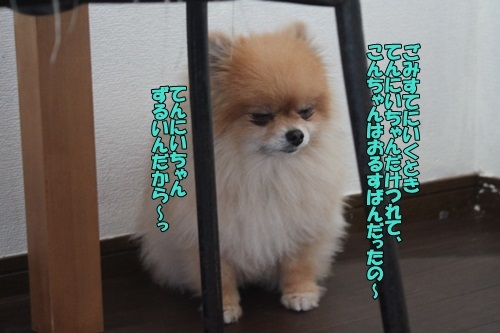 IMG_09780419.jpg