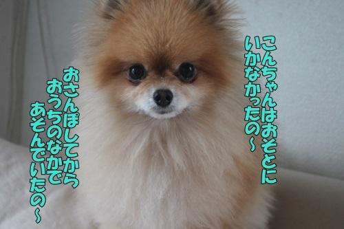 IMG_10340424.jpg