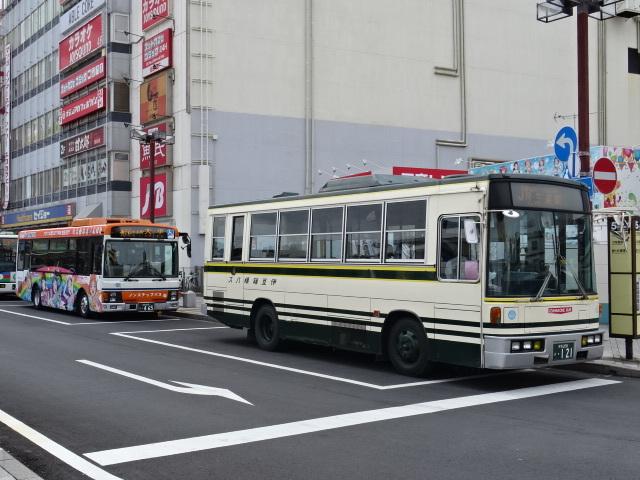 DSC00728.jpg