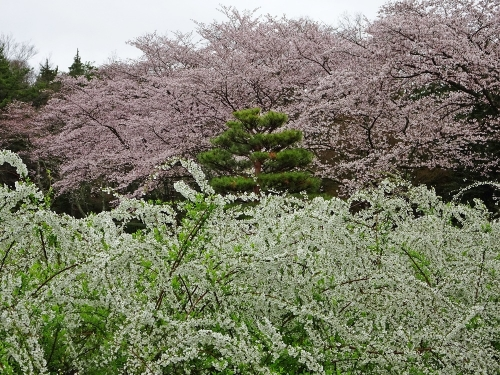 愛知県緑化センター