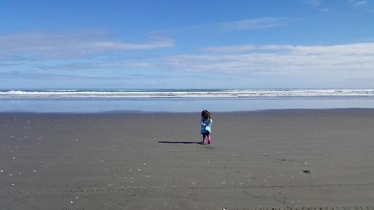 ニュージーランド・フォクストンビーチ02