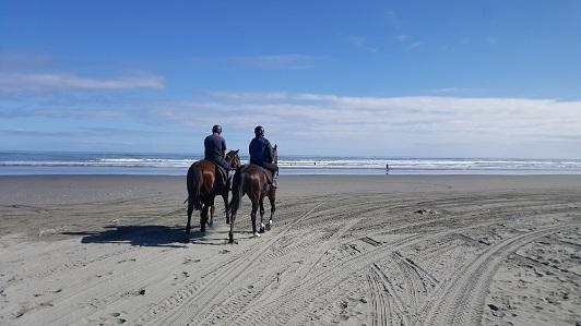 ニュージーランド・フォクストンビーチ03