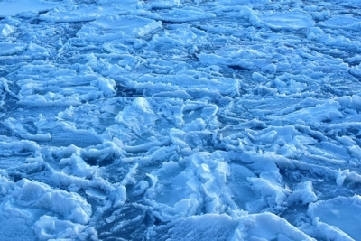 間近で見る流氷