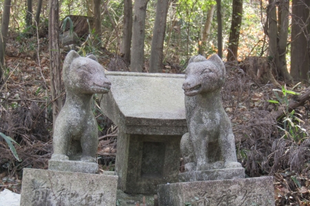 170318兄倉山 (6)s