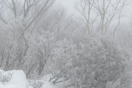 170319黒檜山 (11)s