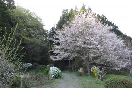 170416小川町~嵐山町 (5)s