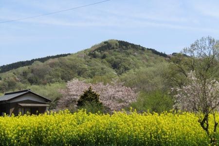 170416小川町~嵐山町 (22)正山s