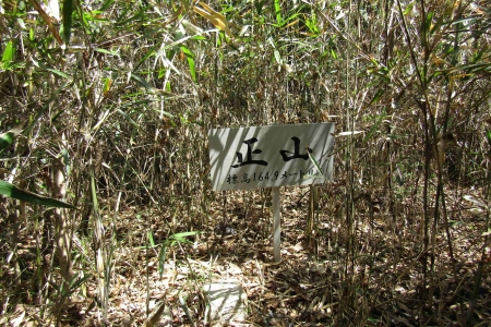 170416小川町~嵐山町 (24)s