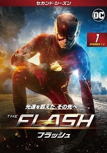 flash21.jpg