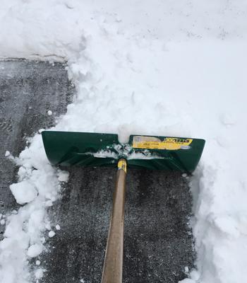 snow03011703.jpg