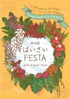 haisaifesta2017_y_small.jpg