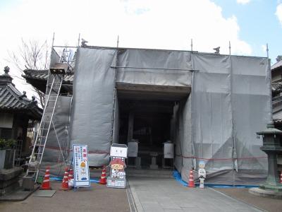 suzume2017-08.jpg