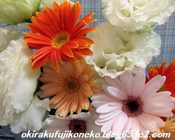 0412花
