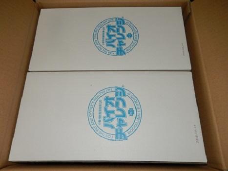 DSCN9071.jpg