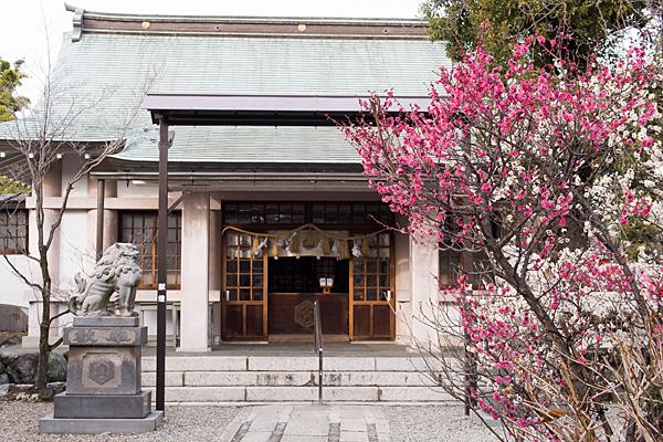 榎白山神社拝殿と梅