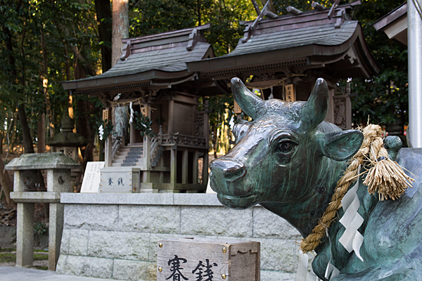 針名神社天神社と牛