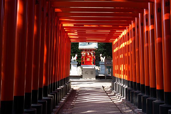 川原神社稲荷の朱鳥居