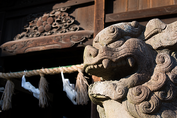 児子社狛犬と拝殿の彫り物
