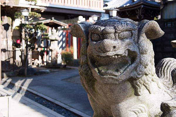 松山神社狛犬