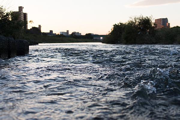 矢田川の流れ